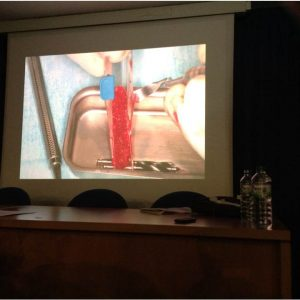 Curso Dres. Manuel Barrachina y Dino Calzavara-Abril 2013