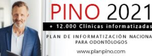 pino300x100